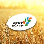 שמיטה ישראלית: בעד ונגד